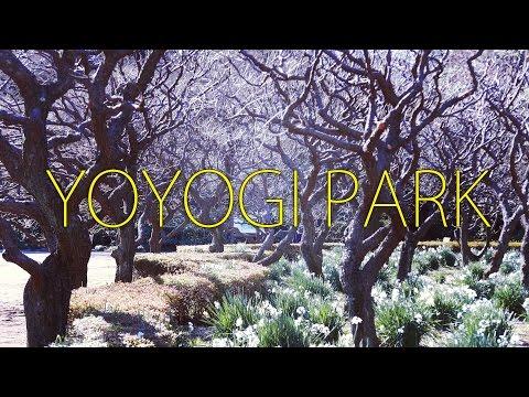 Yoyogi Park / Shinjuku 代々木公園