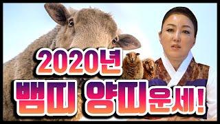 2020년 하반기 뱀띠, 양띠운세 이 중에 하반기에 대박나는 나이는?!