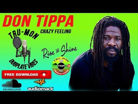 DON TIPPA - This Crazy Feeling / TruMon Dubplate #2