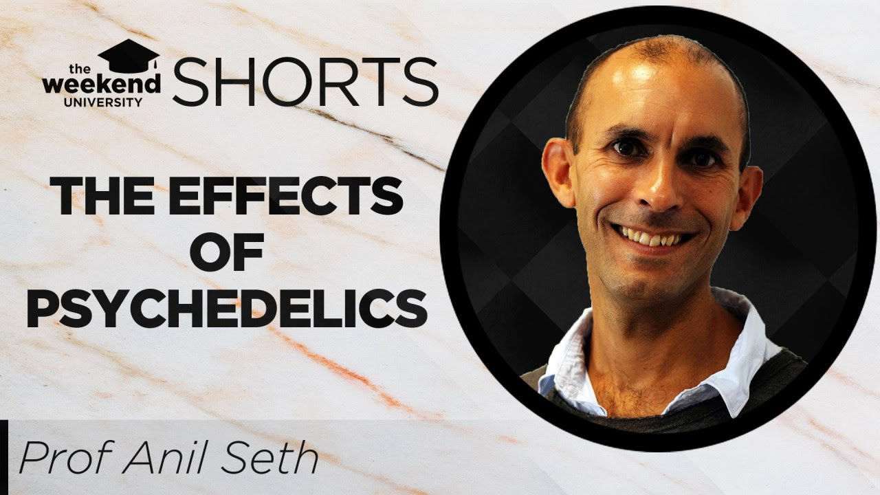 Download The Effects of Psychedelics on Conscious Level | Prof. Anil Seth