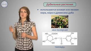Биология 6 класс. Значение растений для человека