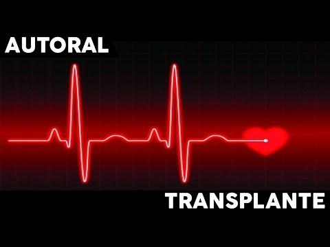 Transplante - Gustavo GN (Vídeo Oficial) ♫♫