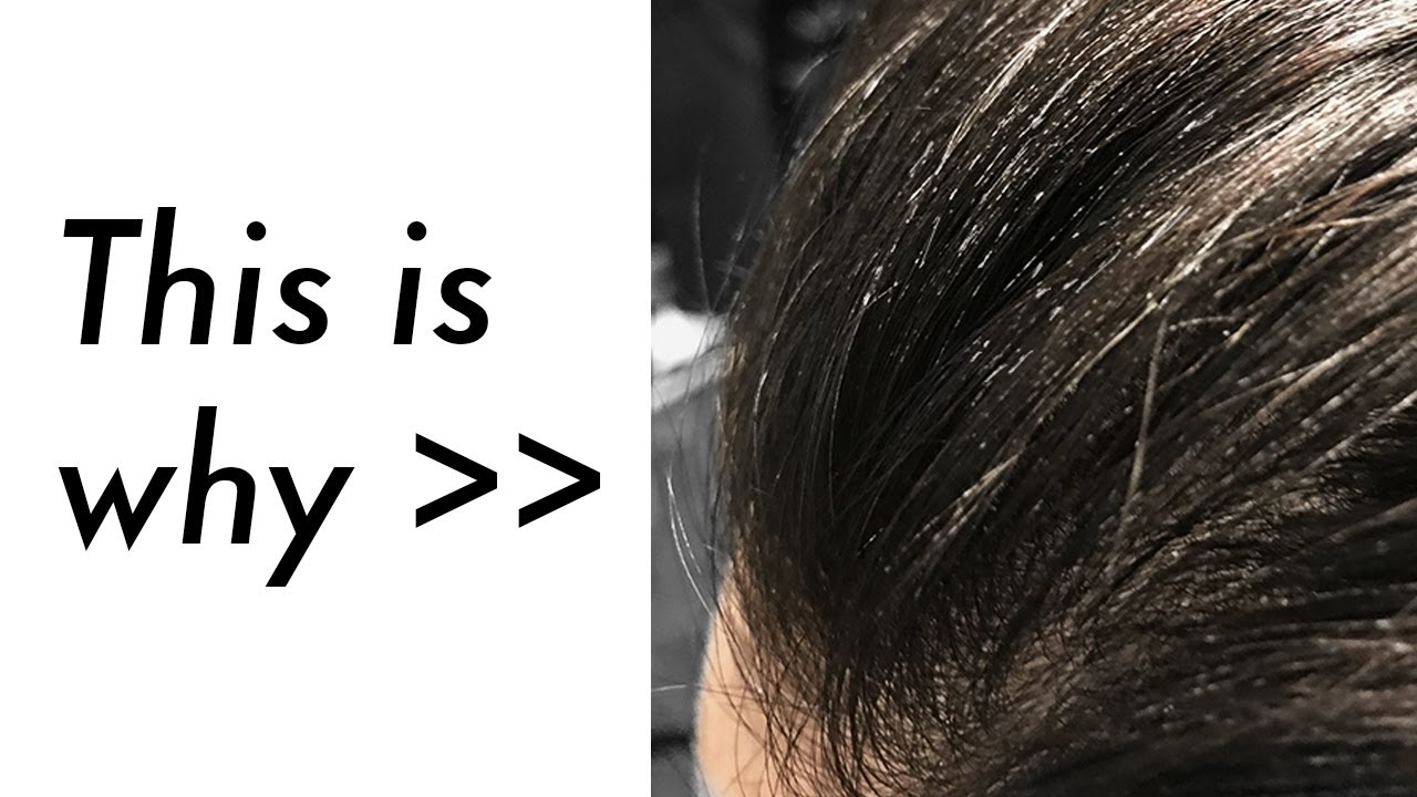 Why I Wash My Hair Everyday - Hair Wash Routine - Products Build-up ...