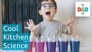 5 Mind-blowing Food Science Experiments To Do At Kitchen | Kids Science