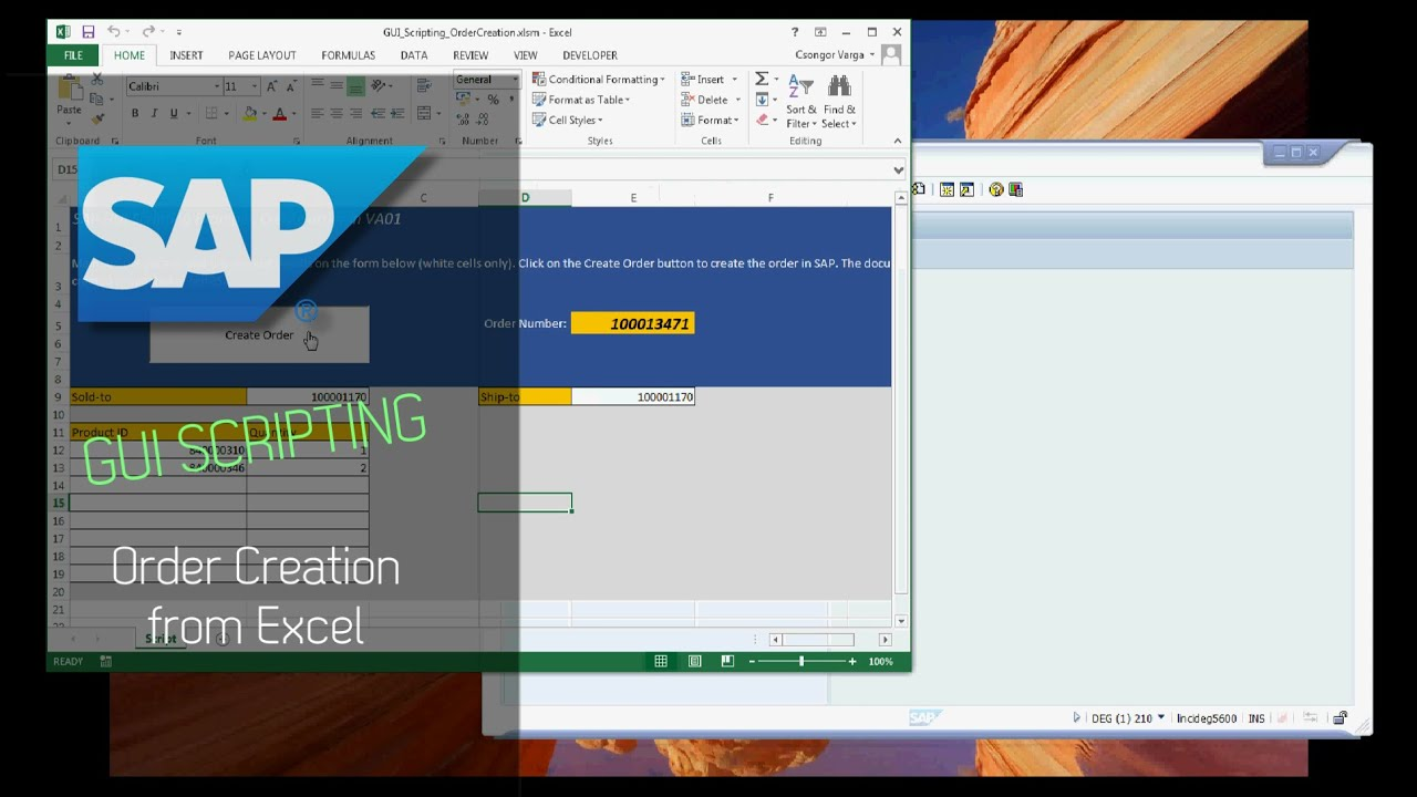 SAP GUI Scripting - Order Creation from Excel