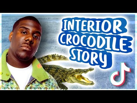 Interior Crocodile Alligator How This Rap Song Became A Meme