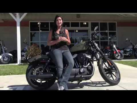 2017 Harley Davidson Sportster Iron 883 Olive Gold for sale 2018