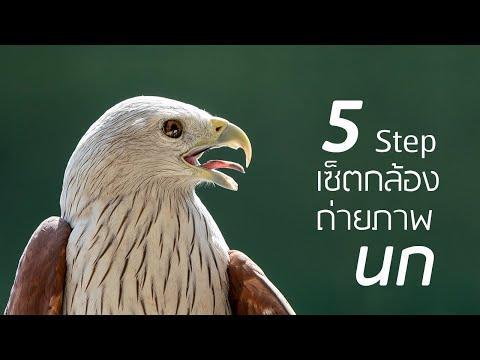 5  Step เซ็ตกล้อง ถ่ายภาพนก