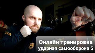 Онлайн тренировка по ударной самообороны 5 Клуб S P A S