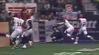 Bobby Sippio - The Arena Football League