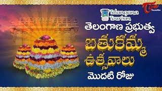 Bathukamma Sambaralu 2017 | Telangana Govt Bathukamma 1st Day Celebrations |  Floral Festival