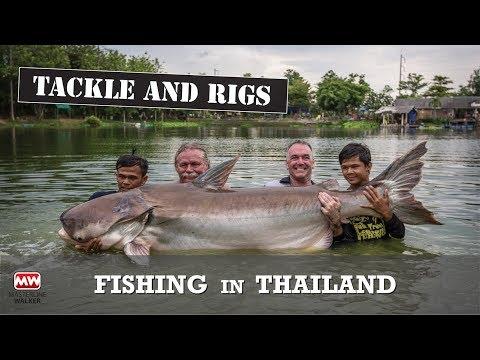 Tackle And Rigs For Lake Fishing In Thailand