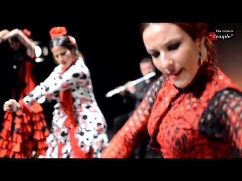 Grupo Flamenco Valencia, para eventos y convenciones.