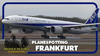 Planespotting Frankfurt Airport   November 2016   Teil 1