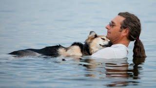 Dono deita no lago com seu cão doente para que ele consiga dormir