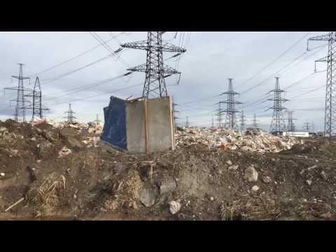 Зеленый Фронт: свалка Новосергиевка