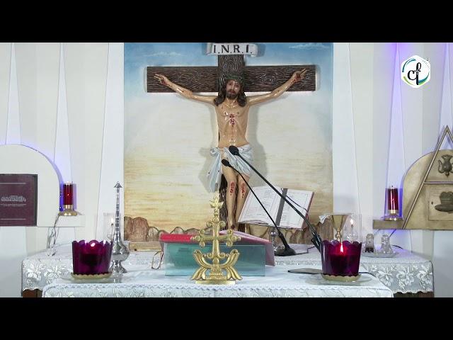 Holy Mass    വി. കുർബാന    Syro Malabar    24.10.2020