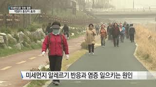 [홍삼] 홍삼 성분 분석! 미세먼지로 인한 염증 약보다…