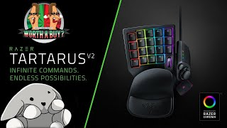 Razer Tartus V2 Review - With Rabbit :o (Video Game Video Review)