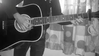 Boulevard of  broken dreams (Green day) cover/guitar acoustics/»