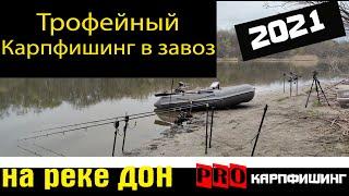 Ловля карпа в завоз на реке Дон Трофейный карпфишинг 2021 покоряю дикарь Открытие сезона