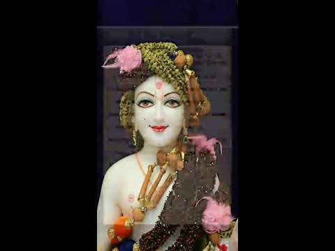 Mogarana full sakhi | with lyrics