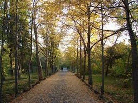 World Famous Botanical Gardens 2: Yerevan Botanical Garden (Armenia)