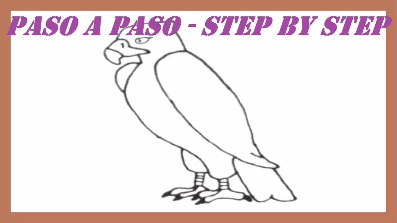 Como dibujar una guila paso a paso l How to draw an Eagle step by