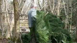 bushcraft survival long term wilderness shelter part 6 of 7 thatching the shelter.wmv