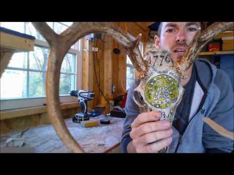 Mounting Antlers to Deer Skull (Replica)