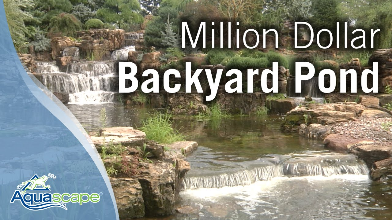 million dollar backyard pond youtube