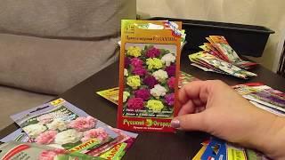 Подготовка к январским посевам цветов.28.12.2019