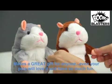 Talking Hamster Buddy