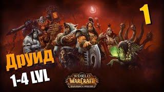 WoW Прокачка друида #1 Начинается движуха/WoW druid leveling #1