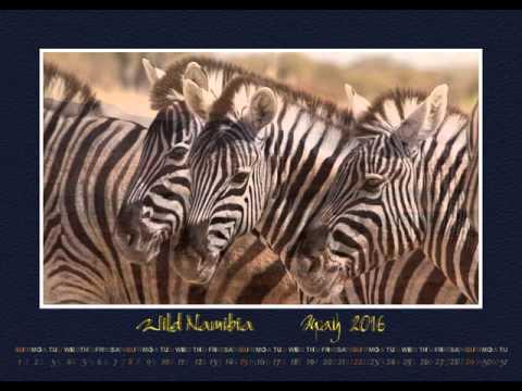 Wild Namibia 2016 - Namibia Kalender 2016