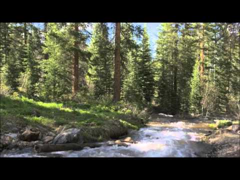 5 HOUR Relaxation Video of River Scenery in a Colorado Forest :)