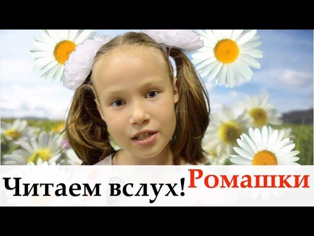 Изображение предпросмотра прочтения – ПолинаЛепилина читает произведение «Ромашка» (Александрова Зинаида)