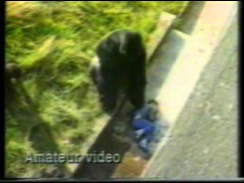 KTLA-TV 5 LOS ANGELES  FULL NEWSCAST 9-01-1986  KEITH OLBERMANN