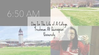 Day In The Life of A College Freshman At Quinnipiac Univeristy