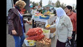 Сельхозярмарки начинаются с 16 сентября.