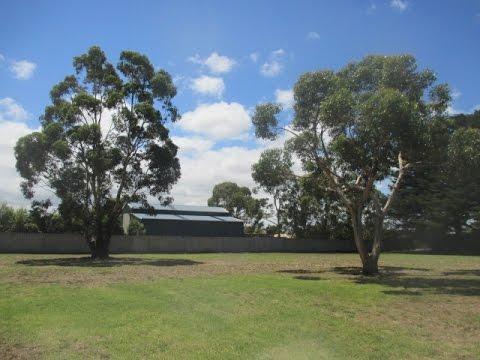 Dog Park Melbourne Fenced
