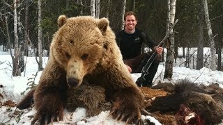 2 Giant interior Alaskan Grizzlies! - Limitless 35