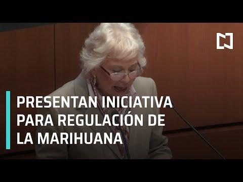 Sánchez Cordero presenta iniciativa para regulación de la marihuana - Paralelo 23