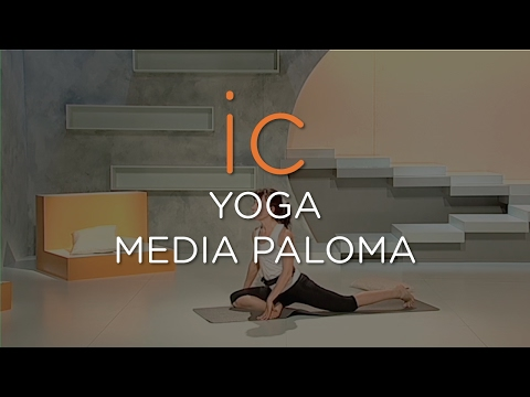 YOGA || MEDIA PALOMA