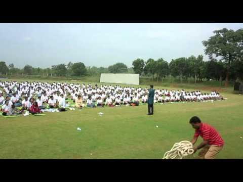 Himalaya Drug Company Yoga   Medical Yoga and Wellness Introduction  Dr Shashikant