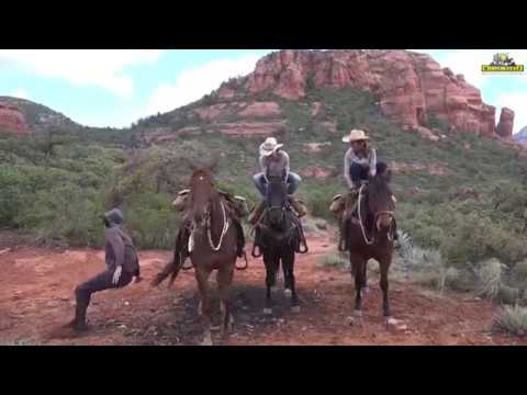 Ride with Missouri Fox Trotters in Arizona