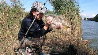 Рыбалка на реке с двумя ночёвками Карпы караси и шаурма