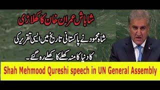 Shah Mehmood Qureshi speech in UN General Assembly and India has Seen Mirror About kashmir