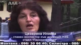 видео Уничтожение насекомых l грызунов l неприятного