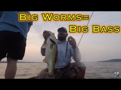 Lake Fork Summer Bass Fishing: Tips For Big Plastic Worms